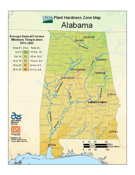 Alabama Grow Zone Map - BuyEvergreenShrubs.com