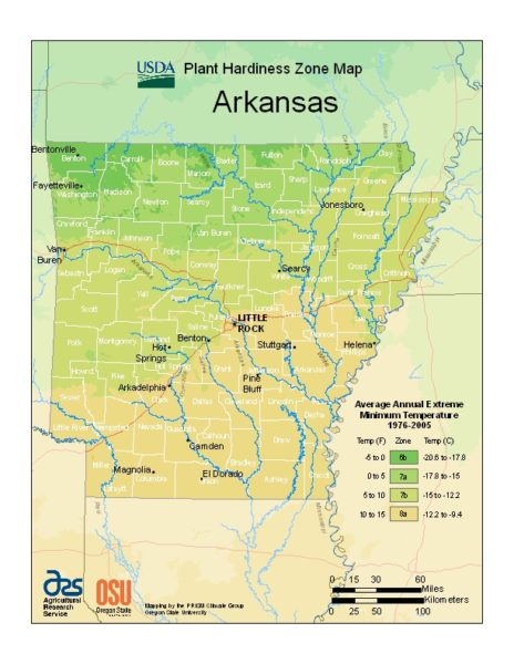 Arkansas Grow Zone Map - BuyEvergreenShrubs.com