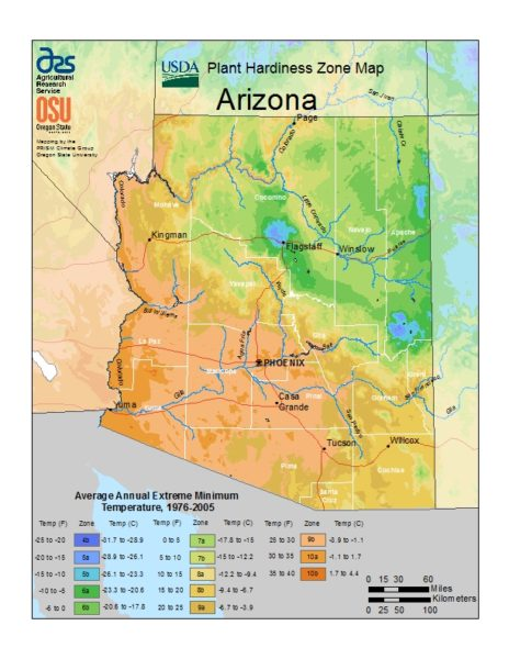 Arizona Grow Zone Map - BuyEvergreenShrubs.com