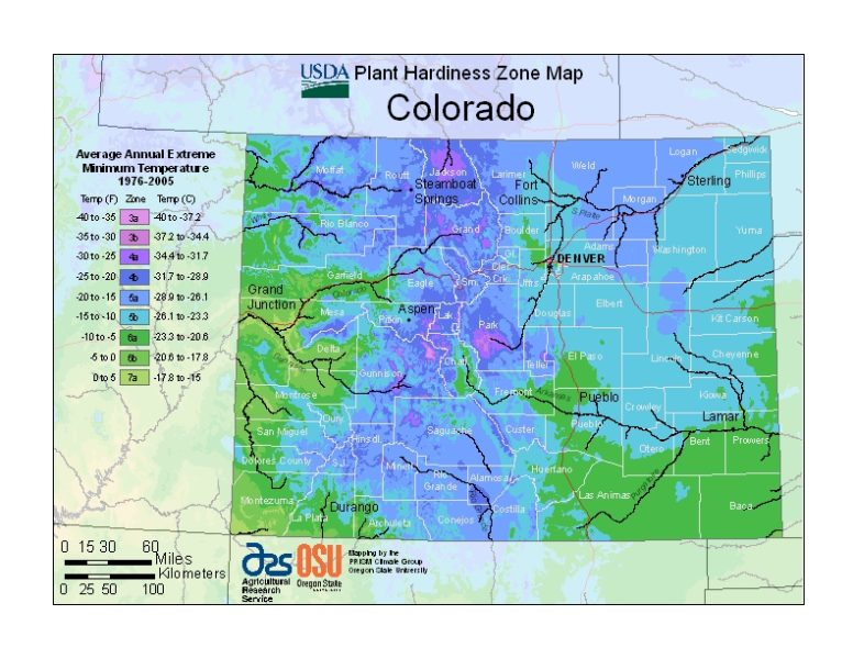 Colorado Grow Zone Map - BuyEvergreenShrubs.com