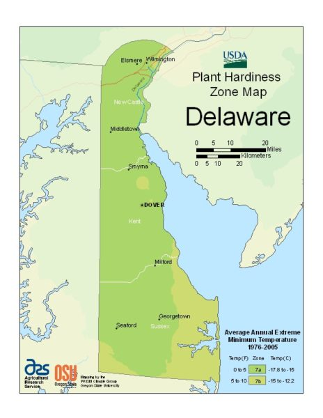 Delaware Grow Zone Map - BuyEvergreenShrubs.com