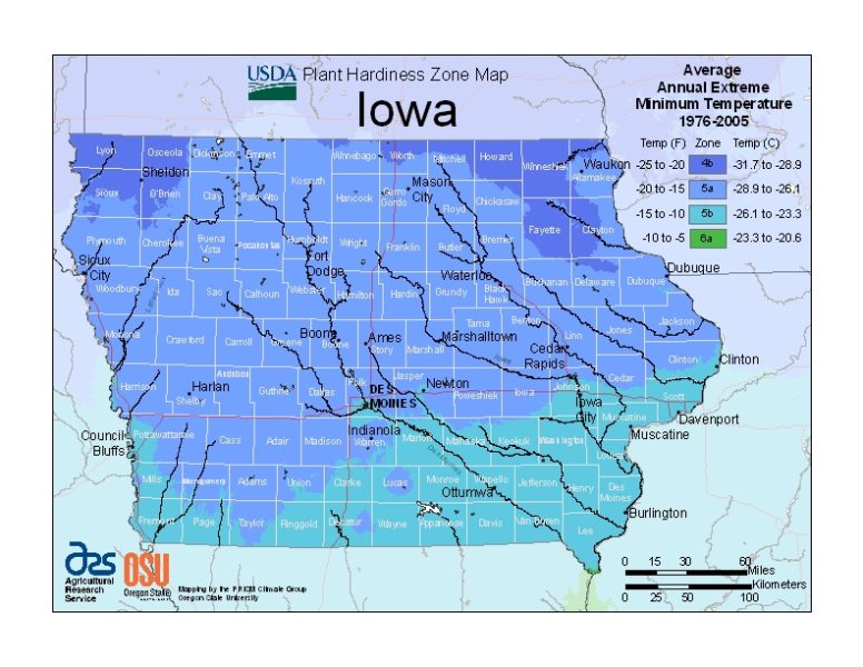 Iowa Grow Zone Map - BuyEvergreenShrubs.com
