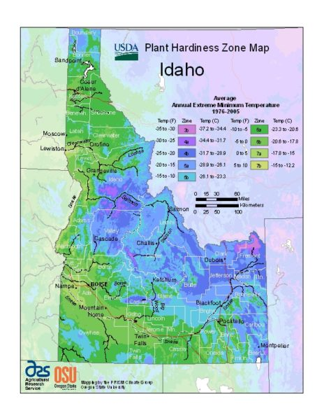 Idaho Grow Zone Map - BuyEvergreenShrubs.com
