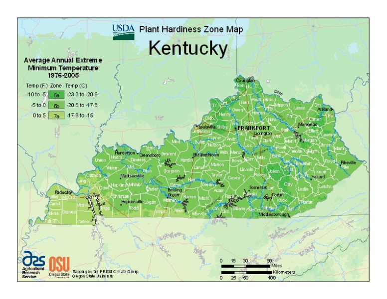 Kentucky Grow Zone Map - BuyEvergreenShrubs.com