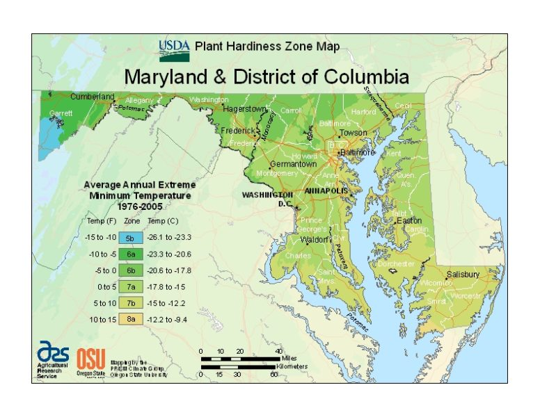 Maryland Grow Zone Map - BuyEvergreenShrubs.com