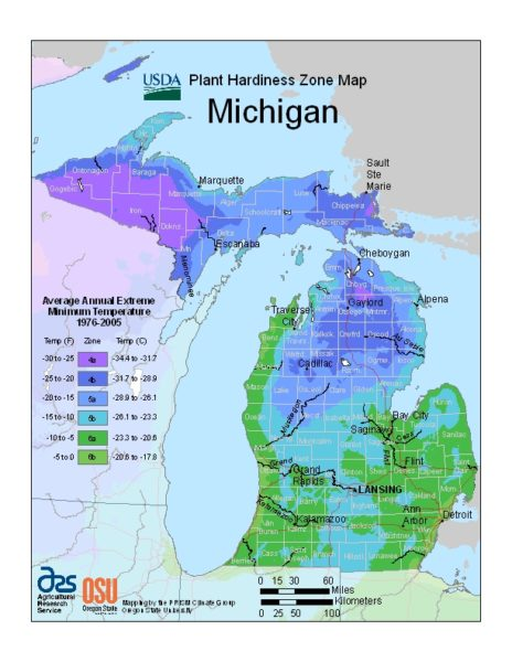Michigan Grow Zone Map - BuyEvergreenShrubs.com