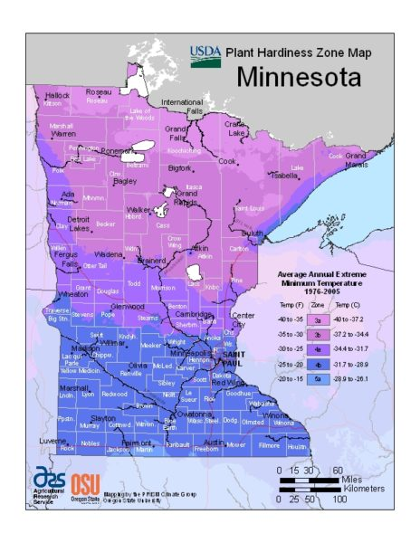 Minnesota Grow Zone Map - BuyEvergreenShrubs.com