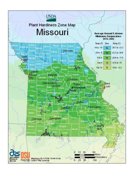Missouri Grow Zone Map - BuyEvergreenShrubs.com