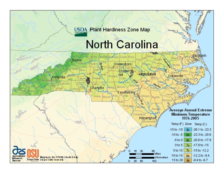North Carolina Grow Zone Map - BuyEvergreenShrubs.com