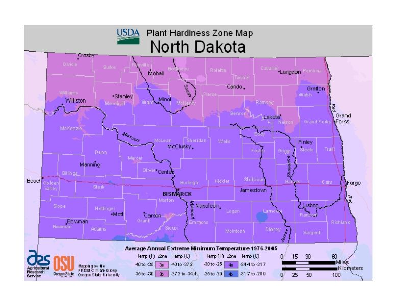 North Dakota Grow Zone Map - BuyEvergreenShrubs.com