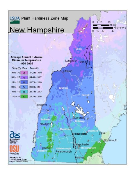 New Hampshire Grow Zone Map - BuyEvergreenShrubs.com