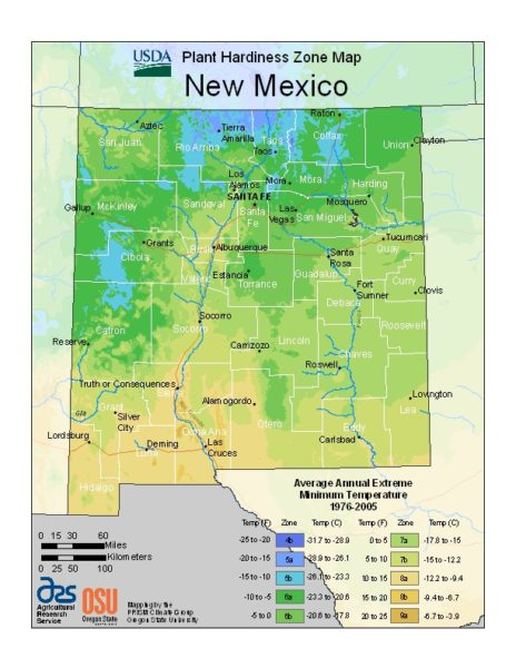 New Mexico Grow Zone Map - BuyEvergreenShrubs.com