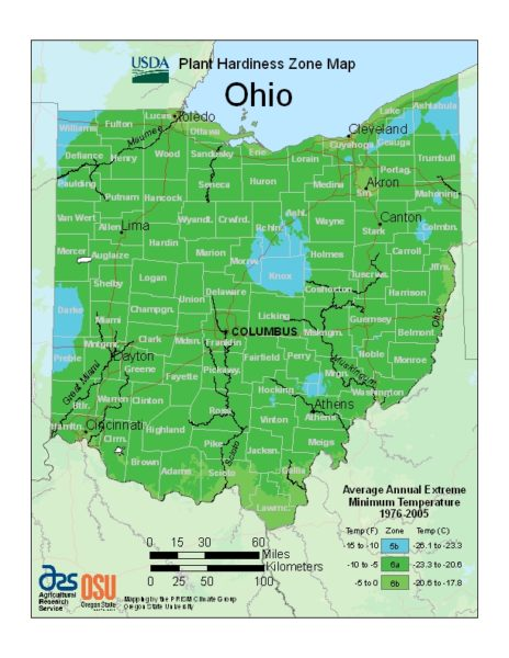 Ohio Grow Zone Map - BuyEvergreenShrubs.com