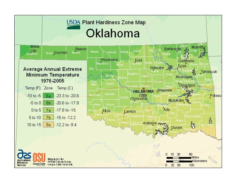 Oklahoma Grow Zone Map - BuyEvergreenShrubs.com