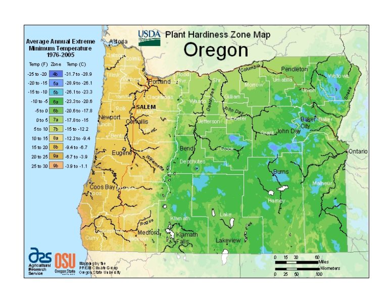 Oregon Grow Zone Map - BuyEvergreenShrubs.com