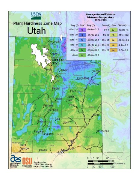 Utah Grow Zone Map - BuyEvergreenShrubs.com