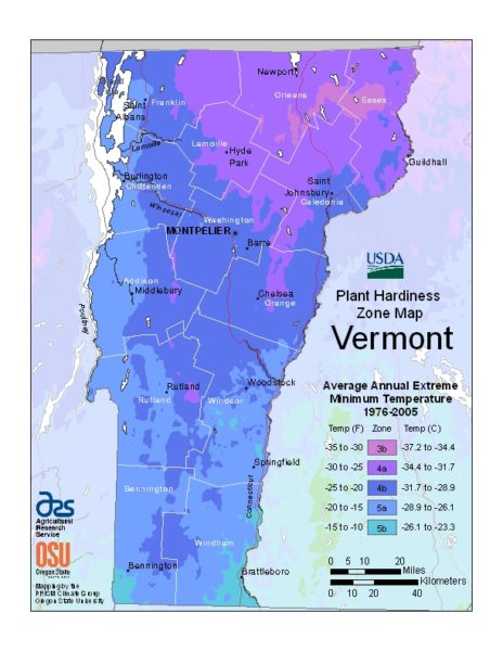 Vermont Grow Zone Map - BuyEvergreenShrubs.com