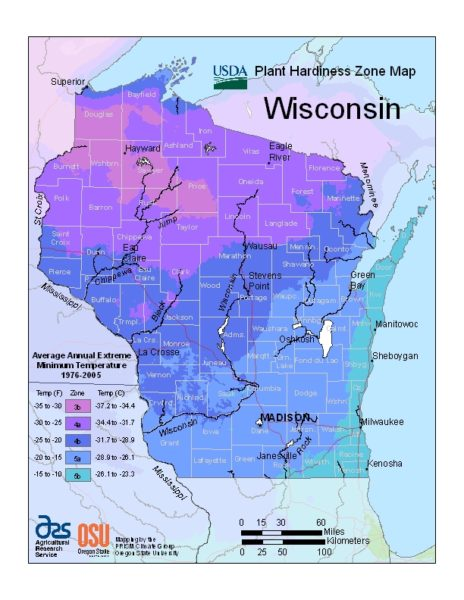Wisconsin Grow Zone Map - BuyEvergreenShrubs.com