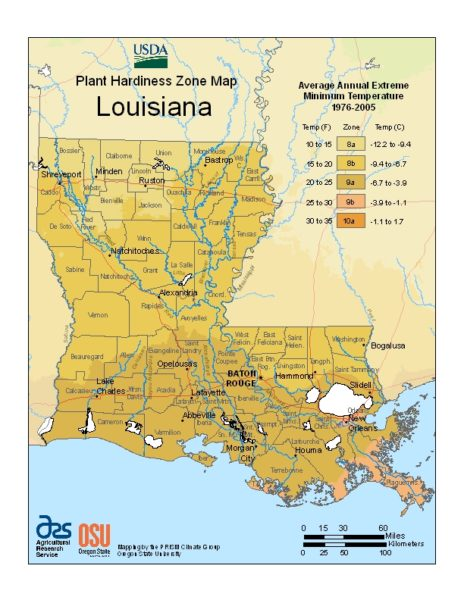 Louisiana Grow Zone Map