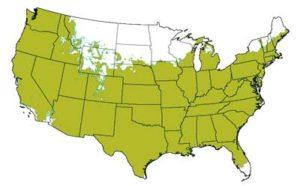 USDA Hardiness Zones 5 - 10