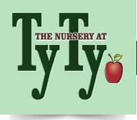 TyTy logo